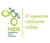 Plan izobraževanj NZS za leto 2017
